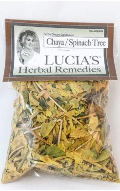 Chaya Herbal Tea / Spinach Tree