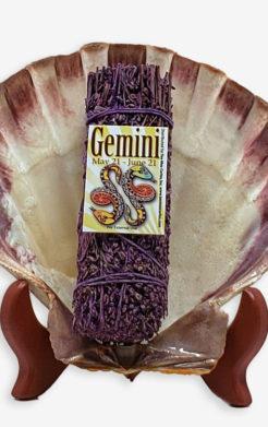 Gemini Zodiac Sage