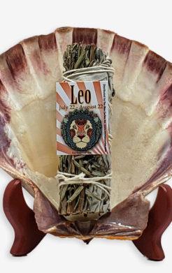 Leo Zodiac Sage